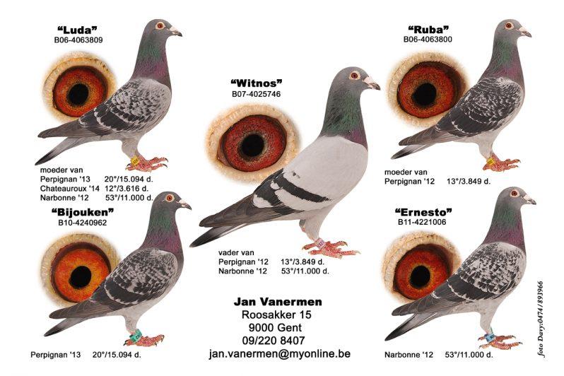 Jong Topkweker Witnos vol